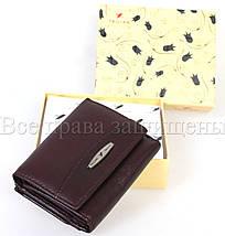Женский кожаный кошелек бордовый Tailian T707-3H09-B CRIMSON, фото 3