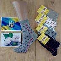 Носки женские демисезонные Житомир Украина хлопок ( 12 пар )