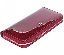 Жіночий шкіряний гаманець червоний Salfeite AE38JUJUBE RED, фото 2