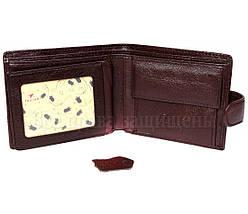 Мужской кожаный кошелек коричневый Tailian T120CRIMSONmen, фото 3