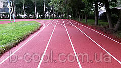 Teking Track для беговых дорожек, фото 2