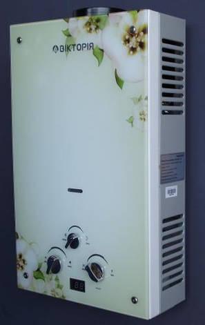 Газовая колонка Виктория  JSD 10 дисплей орхидея, фото 2