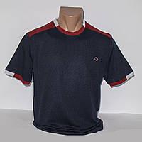 Мужская синяя футболка лакоста Турция т.м. Piyera P24