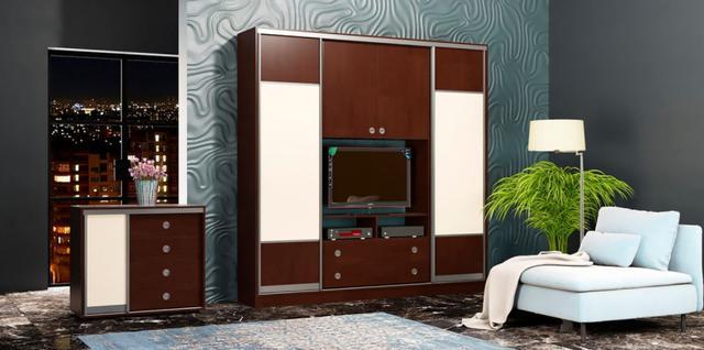 Шкаф-купе для гостиной 2100х450х2400 (в интерьере, фото 2)