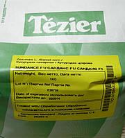 Кукуруза сладкая Санданс 1 кг