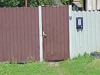 Калитка з профнастила Хв-11, фото 1