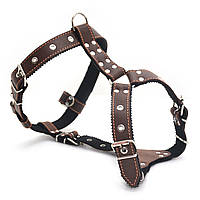 Шлея нагрудник для собак кожаная Стаффорд 2 коричневая