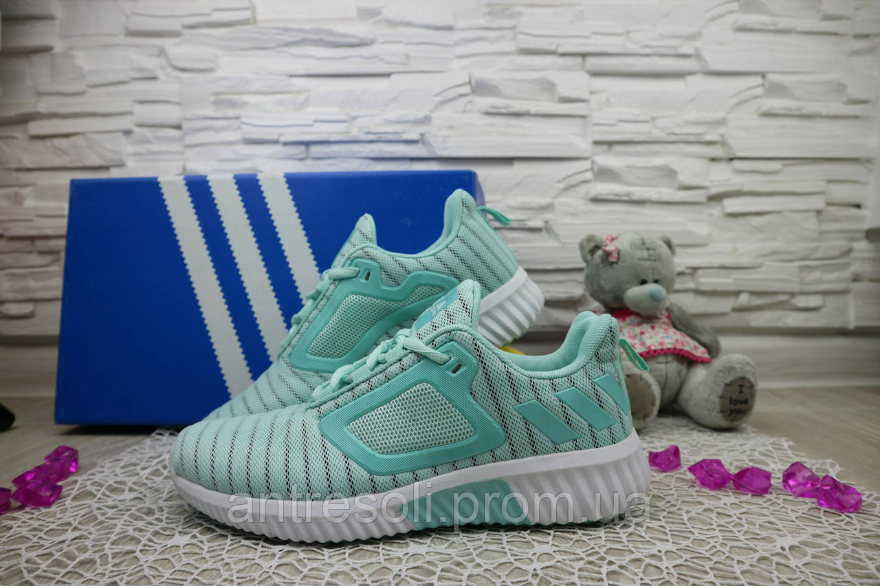 Женские кроссовки Adidas ClimaCool 7391-3 Берюзовые