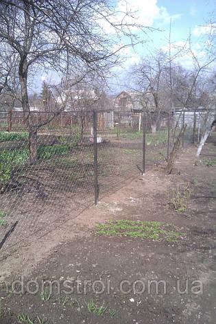 Дачный забор из рабицы, фото 2