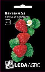 "Семена клубники Вантайм S1, 0,02 гр., ТМ ""ЛедаАгро"""