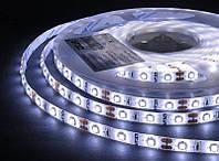 LED лента Estar SMD 2835 60шт/м, 14,4W/м, IP65, 12V, 5500-6000К