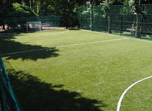 Трава для футбола
