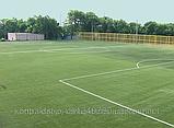Трава для футбола, фото 4
