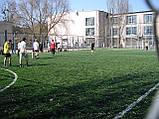 Трава для футбола, фото 5