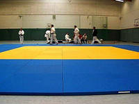 Спортивный коврик для борьбы 200*100*4 см., фото 1