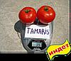 Семена томата Тамарис F1 1000 семян Clause