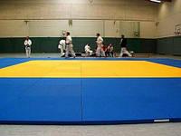 Мат татами спортивный гимнастический 200*100*4 см.