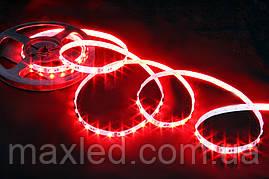 Лента 5050 RGB  60N LS5N60RGBW STANDART