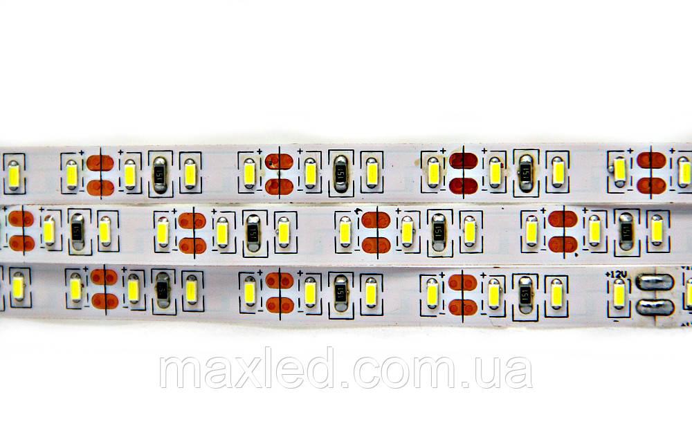 Лента 3014 CW 120N LP3014N120CWW PREMIUM