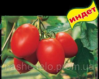 Семена томата Колибри F1 250 семян Clause