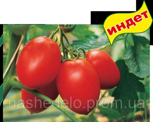 Колибри Ф1 1000 сем. томат Clause