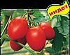 Семена томата Колибри F1 1000 семян Clause