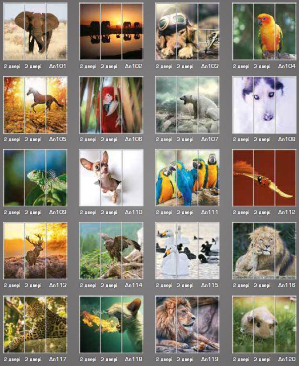 Фотопечать Животные (фото 2)