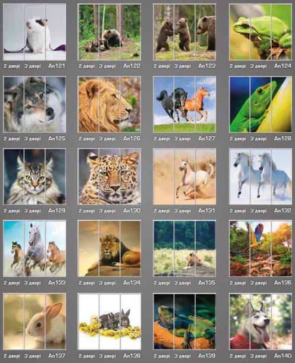 Фотопечать Животные (фото 3)