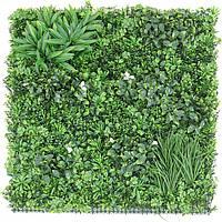 Декоративное вертикальное озеленение Фитостена 100x100 см GCK-10
