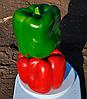 Семена перца сладкого Карисма F1 1000 семян Clause