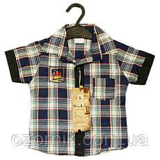Оптом Рубашка в Клетку для Мальчиков 1-4 года