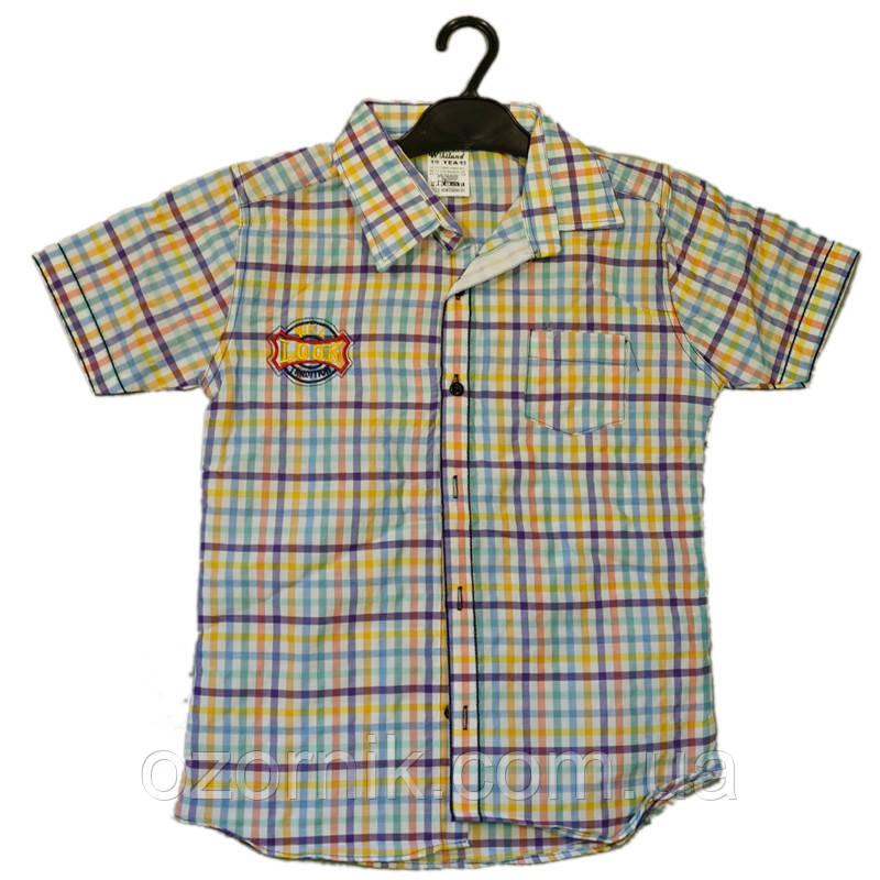 Оптом Рубашка для Мальчиков 9-12 лет