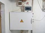 Щит автоматики і блок контролера для сушіння фруктів і овочів, фото 2