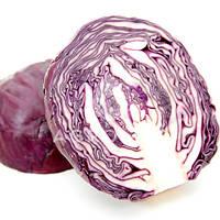 Семена капусты краснокочанной Рокси F1 (Roxy), 2500 шт, Seminis