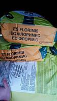 Подсолнечник Euralis  ЕС Флоримис  (ЕвроЛайтинг)
