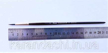 Кисть Pinax Poseidon 821 БЕЛКА микс № 2 круглая короткая ручка, фото 3