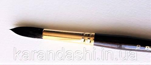 Кисть Pinax Poseidon 821 БЕЛКА микс № 10 круглая короткая ручка, фото 2