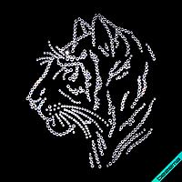Переводки на шорты термо Тигр (Стекло,2мм-бел.,3мм-бел.)