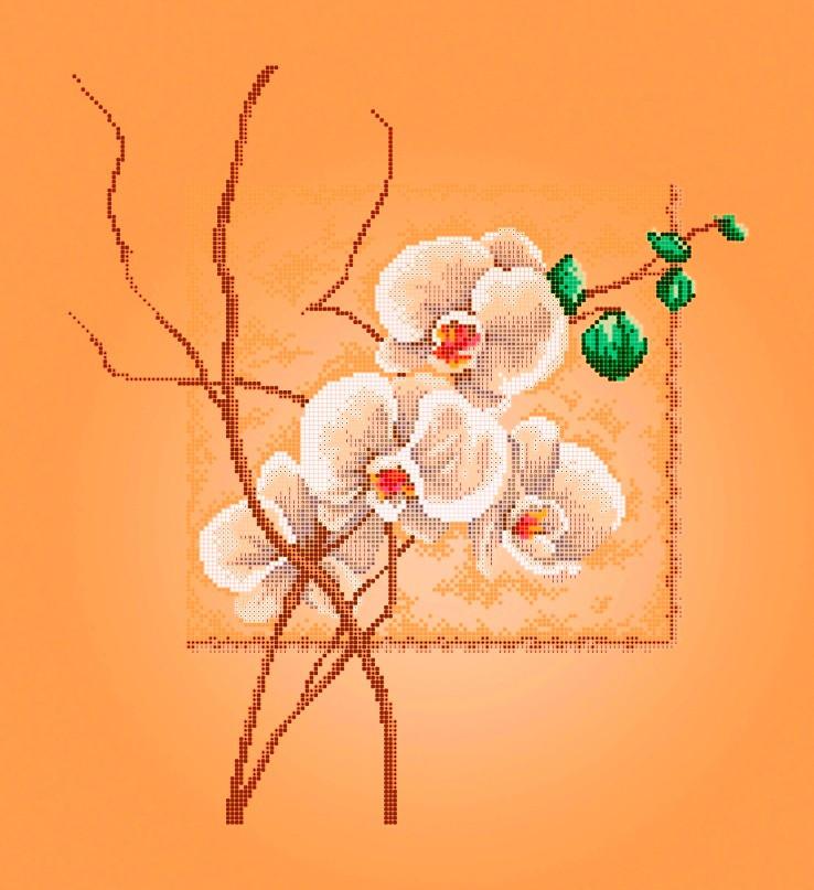 Схема для вышивки / вышивания бисером «Орхідея» Бежевий фон (A2) 40x60