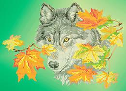 Схема для вышивки / вышивания бисером «Волк в листьях» (A3) 30x40