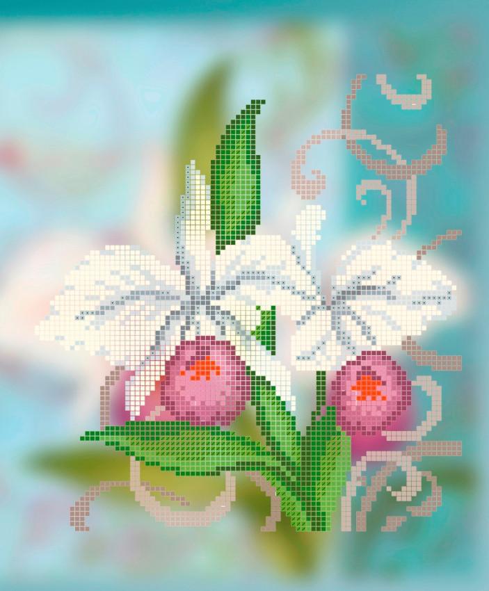 Схема для вышивки / вышивания бисером «Каттлея»  (A4) 20x25