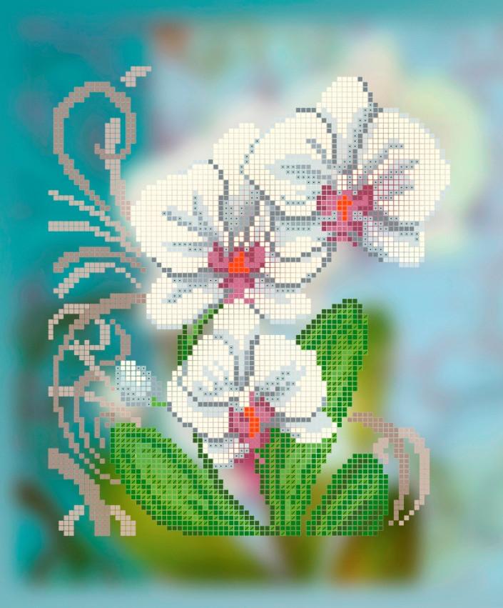 Схема для вышивки / вышивания бисером «Фаленопсис»  (A4) 20x25