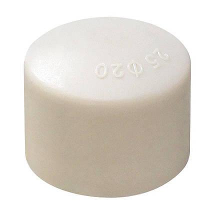 1025 VS® Заглушка (крышка) ф20, фото 2
