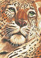 Схема для вышивки / вышивания бисером «Погляд тигра» (A3) 30x40