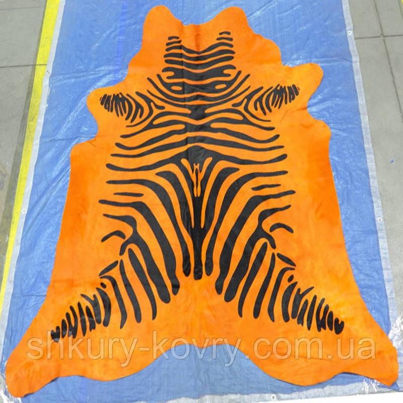 Зебра на оранжевом фоне бразильские крашенные  шкуры