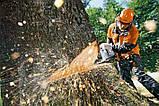 Спил деревьев, корчевка пней, фото 2