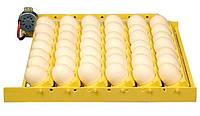 Инкубатор с автоматическим переворотом яиц.