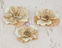 Бумажные цветы Prima - Perdu - Beige , 571054