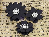 Бумажные цветы Prima - La Tiza - Chalk Board - Trio , 571214