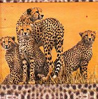Салфетка для декупажа Леопарды, 33см х 33см